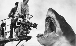 jaws on location